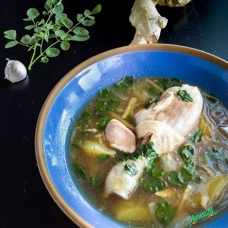 Moringa Chicken Soup
